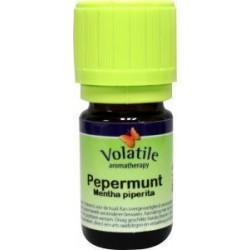 Volatile Pepermunt etherische olie 10 ml