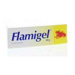 Flamigel 40 gram